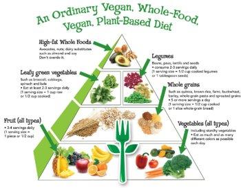 Vegan-wholefood49853